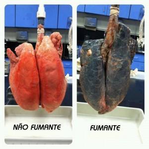 Fumante e não fumante